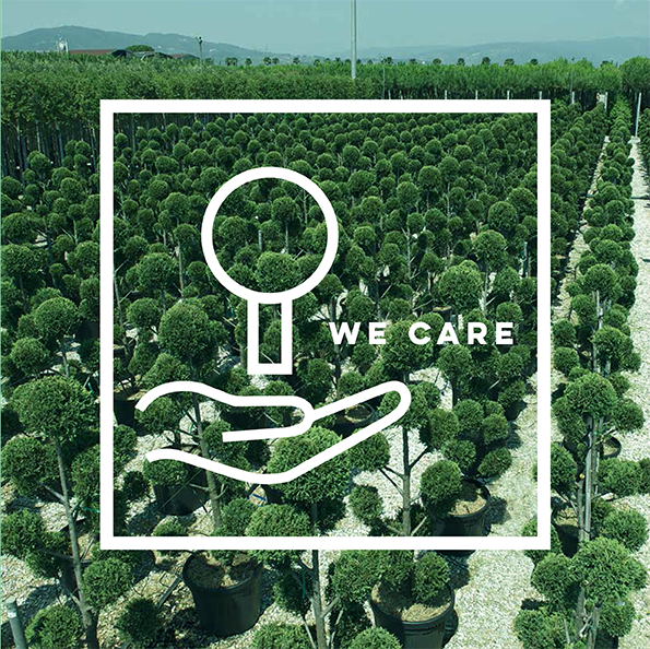 icona we care